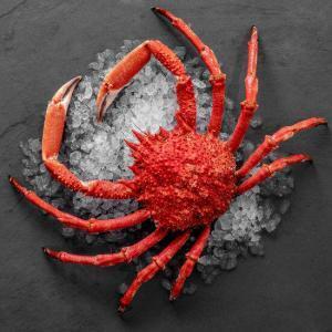 cuisson araignée de mer, temps de cuisson araignée de mer, araignée de mer